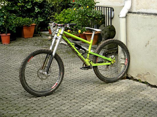 Nicolai Ion 20