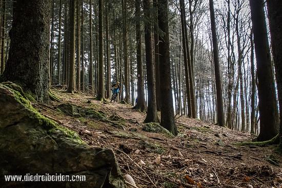 Trails Trails Trails
