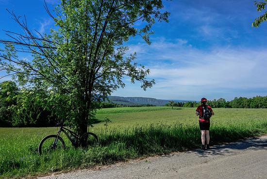 aufm panoramaweg, blick gen elbsandsteingebirge