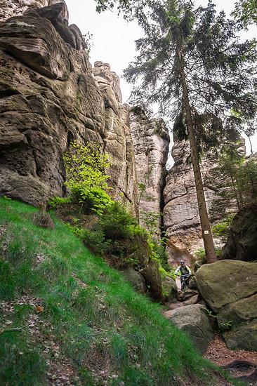 20160526-36L Zittauer Gebirge
