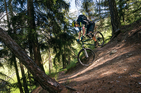 20160717-49L Goldsee Trail