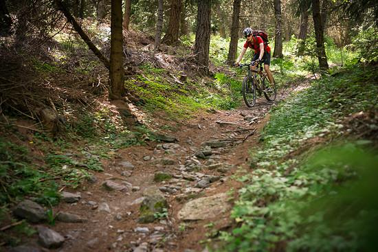 20160717-47L Goldsee Trail