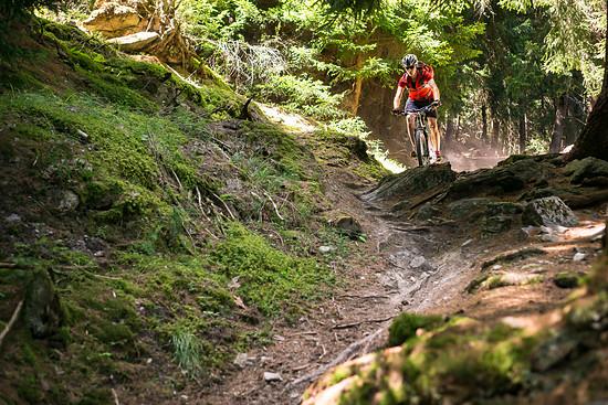 20160717-45L Goldsee Trail