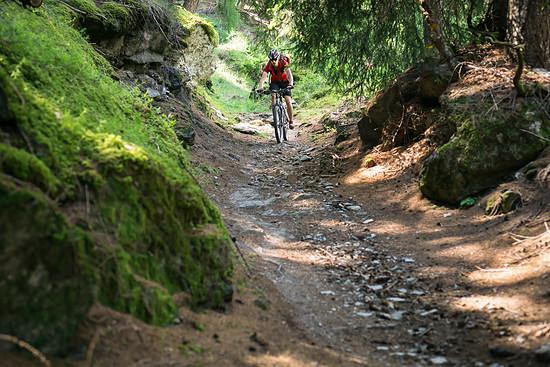 20160717-43L Goldsee Trail