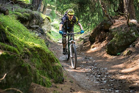 20160717-42L Goldsee Trail