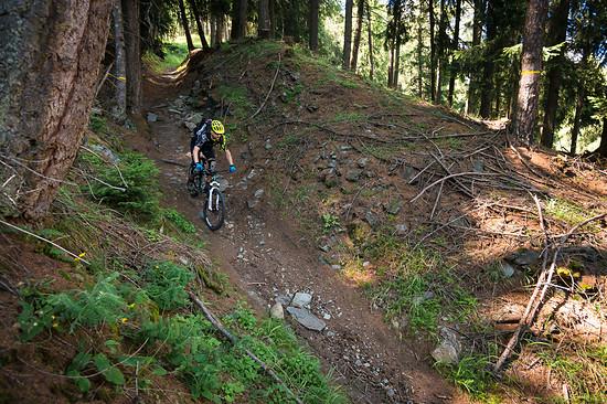 20160717-41L Goldsee Trail