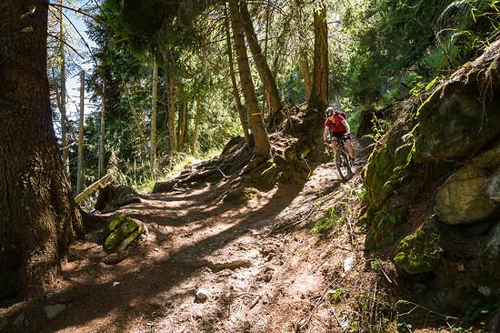 20160717-40L Goldsee Trail