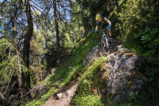 20160717-39L Goldsee Trail