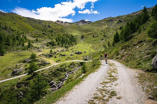 20160717-37L Goldsee Trail
