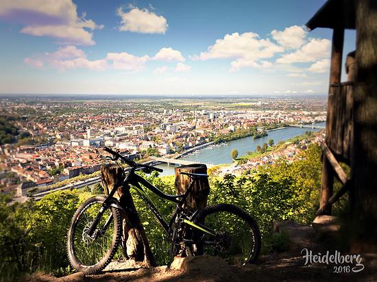 Heidelberg – my hometown!