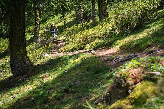 20160717-36L Goldsee Trail