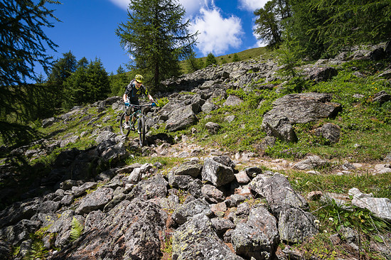 20160717-35L Goldsee Trail