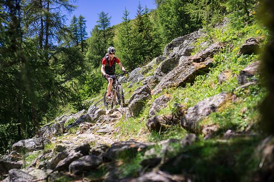 20160717-34L Goldsee Trail