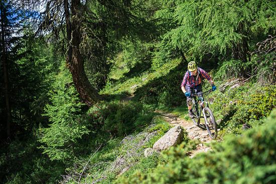 20160717-31L Goldsee Trail