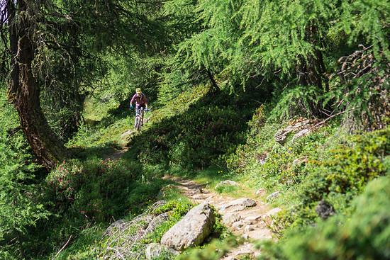 20160717-30L Goldsee Trail