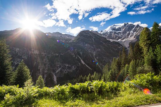 20160717-01L Goldsee Trail