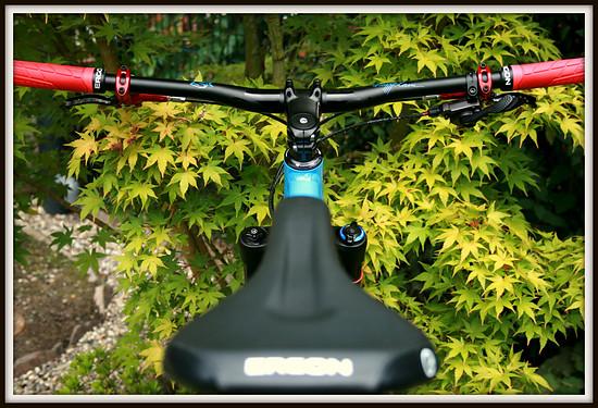 Transalp Summitrider 27,5