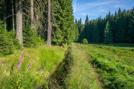 Trail am Grünen Graben