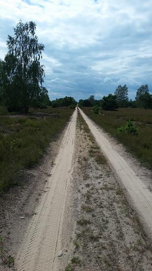 Sandpiste in der Reicherskreuzer Heide Bildgröße ändern