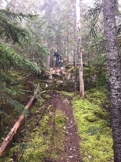 Whistler  Trail: Gargamel im Whistler Valley