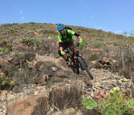 Sentinal Trail