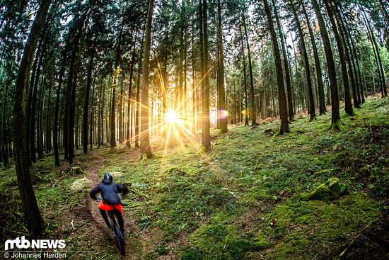 Eine der besten und gleichzeitig spontanen Fotosessions in unserer Gegend. Sonne, Trail, Fahrer Dennis - passte alles!