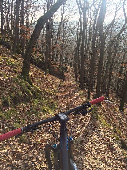 Weinbergs-Trail Nassau, Canyon Spectral AL 7.9