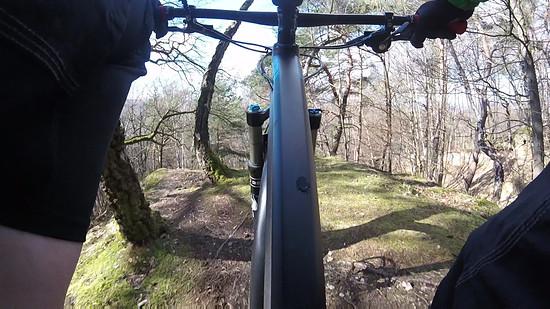 Trail Horchheimer Höhe, Trails Horchheimer Höhe und Lichter Kopf, Canyon Spectral AL 7.9