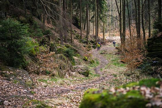 20170325-40L Schneebergrunde