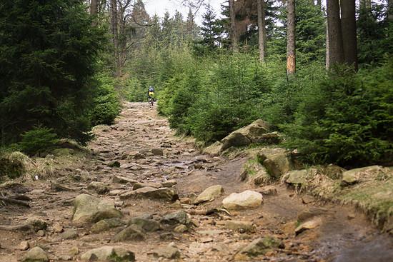 20170410-26L Harz