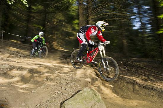 Enduro- vs. Downhillbike