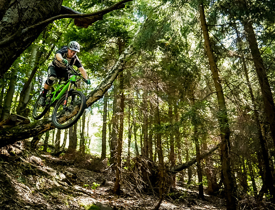 treedrop to slide