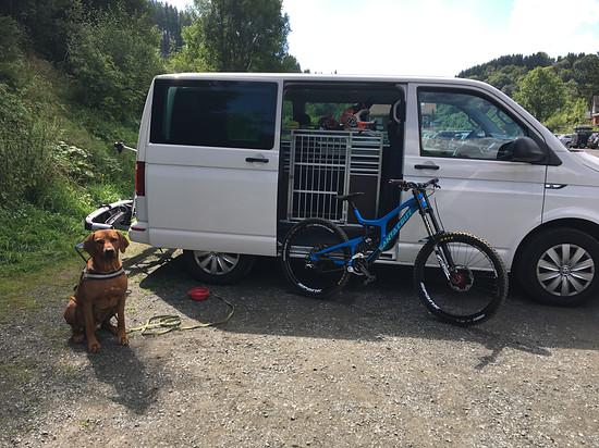 Unterwegs mit Hundi und Rad