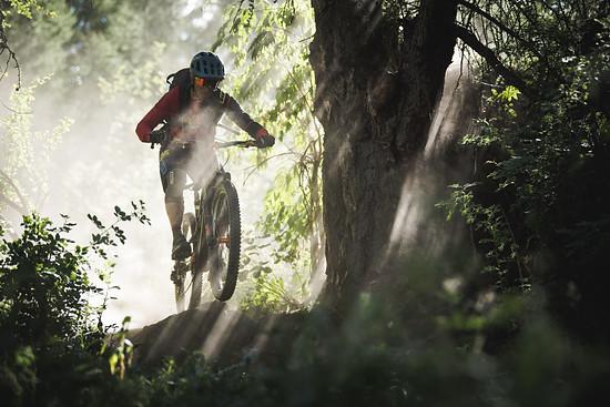 Das Bike ist leicht zu handhaben und geht geschmeidig über kleine Kanten.