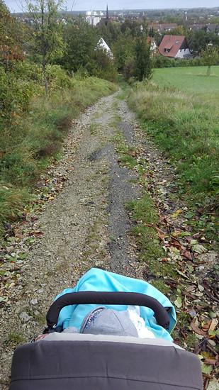 Kinderwagen Downhill