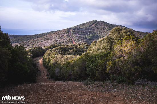 Willkommen in der Toskana: Sanfte Hügel, viel Wald und weite Blicke. Dass sich in diesen Wäldern harte Trails verbergen, denkt man nicht zwingend