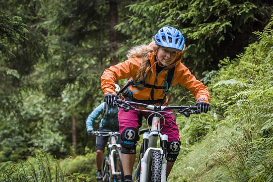Lisa ist vor allem in den Wäldern des Fichtelgebirges aufzufinden