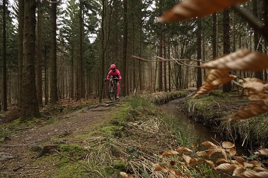 Ein Jammer, wenn solch ein Trail durch Wegebau oder fehlender Pflege verschwinden würde.