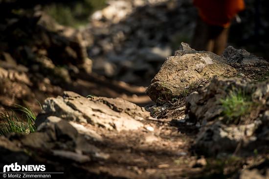 Dieser Stein hingegen hat keine farbliche Markierung. Dafür besitzt er jedoch die perfekte Höhe und die perfekte Form, um Schaltwerke mühelos abzureißen.