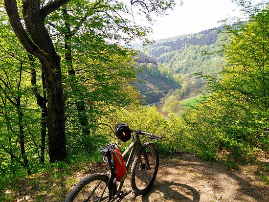 Westerwälder Almblick