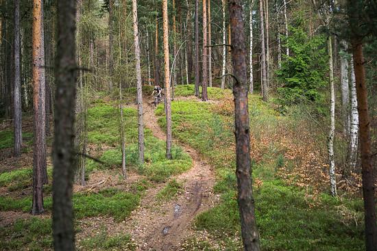 20180415-08L Schneebergrunde