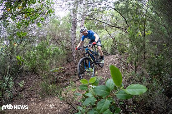 Auch im Downhill kann uns das Rad überzeugen