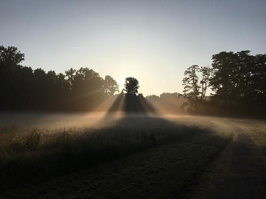 Über die Felder von der Nachtschicht.