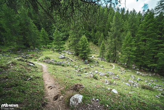Sahniger Trail in Richtung Filisur