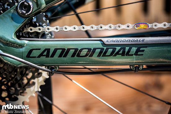 cannondale-jekyll-29-0850