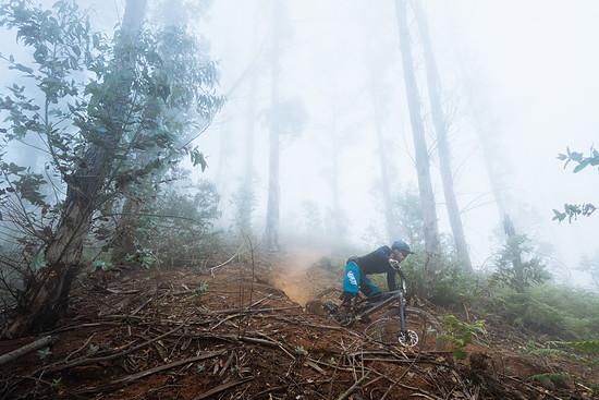 Insbesondere auf den extrem schnellen und etwas ausgebauteren Downhill-Strecken in Madeiras Eukalyptuswäldern war das Nukeproof Mega voll in seinem Element und würde wohl auch in den meisten Bikeparks keine schlechte Figur machen.