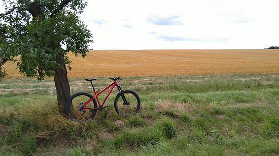 Winterbike Dartmoor Primal+ Red Devil