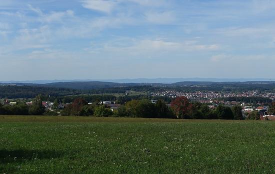 Huhu Pfalz