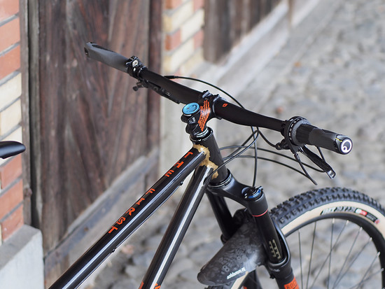 Scar Cycles 29er Pinion Hardtail - Eigenbau