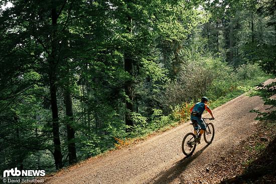 Auf dem Forstweg überzeugt das Trailbike mit angenehmer Sitzposition und klettert flink.